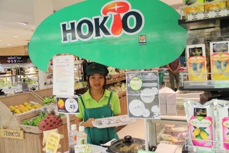 hoktotops_09-3