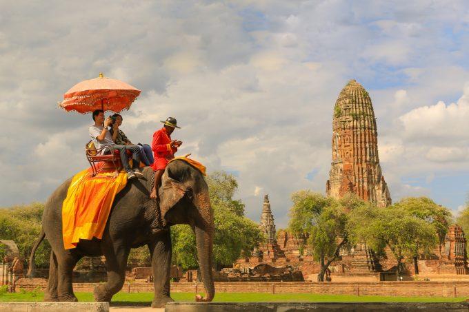 象に乗って王様女王様気分を満喫。