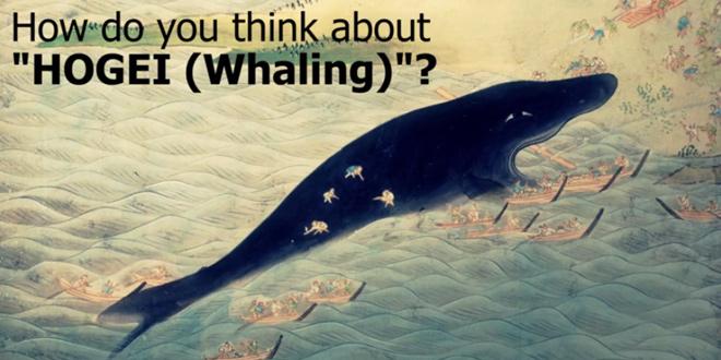 バンコク発!長年の国際問題「捕鯨 」をテーマにした新曲「HOGEI」
