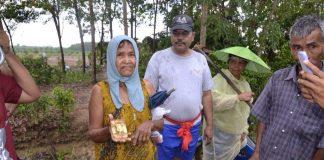 タイのヤシ農園で戦時中の金が発見