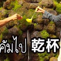 京極の湧き水で乾杯