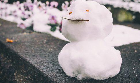 タイのチームが札幌雪まつりで優勝