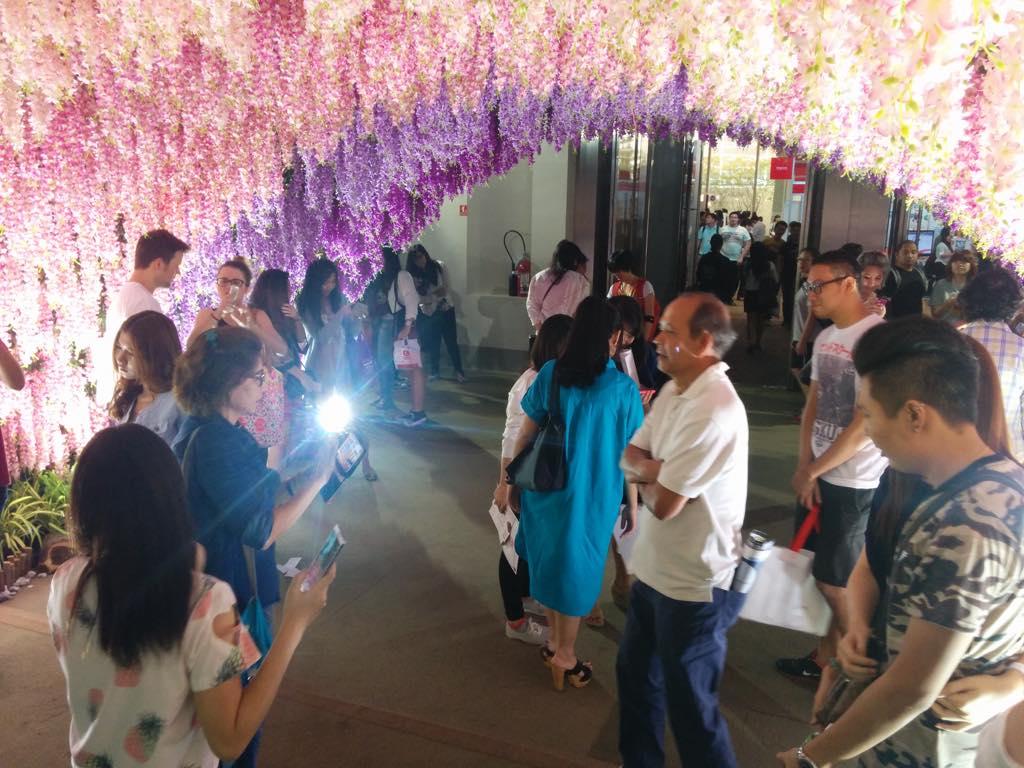藤の花のトンネルとお父さん