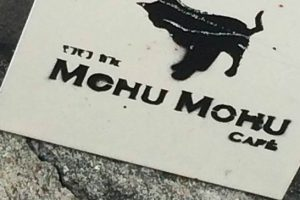 バンコクの猫カフェ「MOHUMOHU」