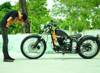 stallions motor