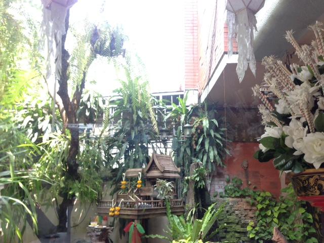店内から眺める中庭