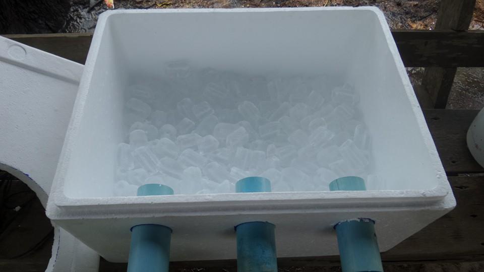発泡スチロールの箱の中に氷
