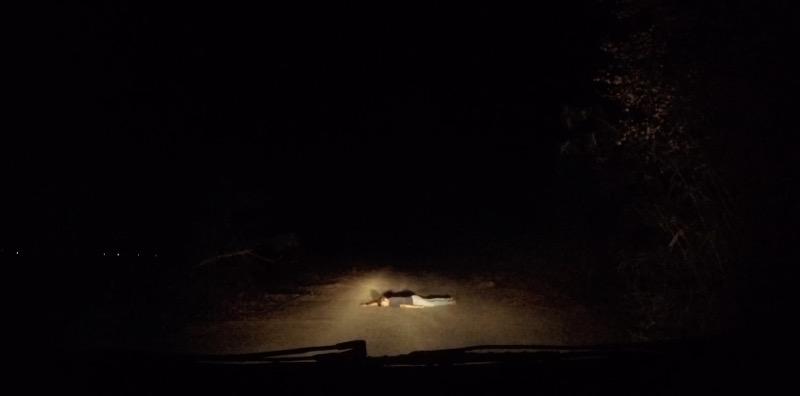 道に倒れこむ男性