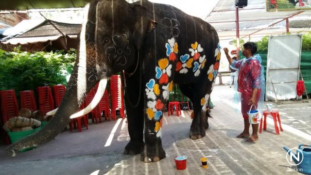 ソンクラーンのイベントのため、ペイントされる象 ©Nation