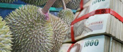 タイのドリアン王が約3500万円で末っ子の婿募集