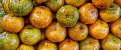 タイの果物摂取量不足が75%、消費拡大キャンペーン実施