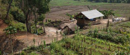 チェンマイでオーガニック農業体験が出来る場所3選